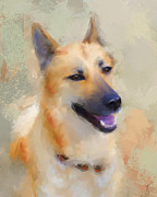 Dog Art Paintings - Belgian Malinois by Jai Johnson