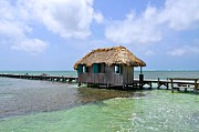 Tropical Photographs Prints - Belize Pier and Seascape Print by Kristina Deane