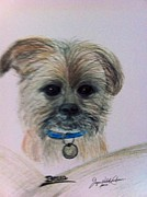 Puppy Drawings - Bella 2 by Joyce  Lawhorn