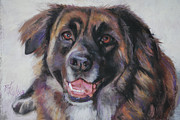 Furry Pastels Posters - Bella Poster by Billie Colson