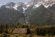 Old Cabins Prints - Bella Coola Valley Print by Ed Nicholles