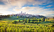 Vineyard Landscape Prints - Bella Toscana Print by JR Photography