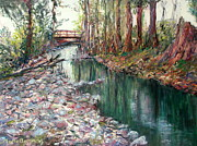 Marie Bergman - Bellevue Creek