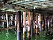 Dominic Piperata - Below the Pier