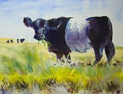Mike Jory Cow Posters - Belted Galloway Cow Painting Poster by Mike Jory