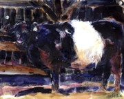 Galloway Prints - Beltie Print by Molly Poole