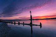 Nigel Hamer - Bembridge Harbour Sunset
