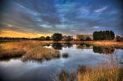 Nigel Hamer - Bembridge Lagoon
