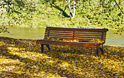 Aleksandr Volkov - Bench in autumn park