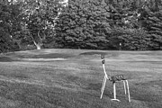 Universities Art - Bench on Golf Course Black and White by John McGraw