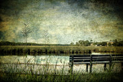 Bayou Prints - Bench with a View Print by Joan McCool