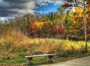 Autumn Prints Prints - Benched in Autumn Print by Jimmy Ostgard