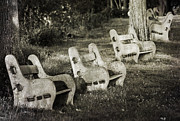 Park Benches Photos - Benches by Bill Pevlor