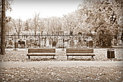 Park Benches Photos - Benches by the Cemetery in Sepia by Valentino Visentini