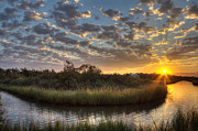 Joan Mccool Art - Bend in the Bayou Sunrise by Joan McCool