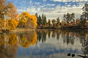 Metro Park Metal Prints - Bend Oregon Metro Park Metal Print by Adam Jewell