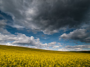 Dark Clouds Photos - Beneath the gloomy sky by Davorin Mance