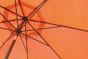 Cabin Wall Posters - Beneath The Orange Umbrella Poster by Paulette Wright