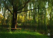 Weeping Willow Posters - Beneath the Willow Poster by Lori Deiter