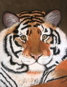 Jungle Pastels Prints - Bengal Print by Michele Turney