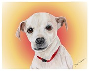 Animal Shelter Mixed Media - Benny - a former shelter sweetie by Dave Anderson