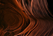 Desert Prints - Bent by the Elements Print by Mike  Dawson