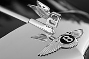 Black And White Photos Prints - Bentley Hood Ornament 5 Print by Jill Reger