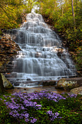 North Cascades Posters - Benton Falls in Spring Poster by Debra and Dave Vanderlaan