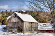 Deborahbenoit Acrylic Prints - Berkshire Barn In Winter Acrylic Print by Deborah Benoit