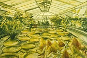 Berlin Germany Painting Posters - Berlin Botanical Garden Poster by Leisa Shannon Corbett