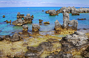 Outcrops Framed Prints - Bermuda Coral Outcrops Framed Print by Charline Xia