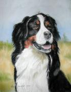 Dog Portraits Pastels Framed Prints - Bernese Mountain Dog Framed Print by Lenore Gaudet