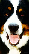 Dogs Digital Art Metal Prints - Bernese Mountain Dog - Oh Happy Day Metal Print by Sharon Cummings