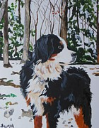 Veronica Silliman - Bernese Mountain Dog