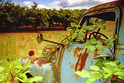 Filbert Framed Prints - Berry Old Truck 2 Framed Print by Jean Noren