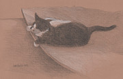 Animal Shelter Drawings - Bert at Ease by Glenda Blake
