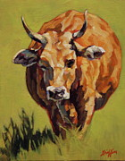 Steer Framed Prints - Bertha Framed Print by Patricia A Griffin