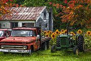 Autumn Scenes Metal Prints - Best Friends Metal Print by Debra and Dave Vanderlaan