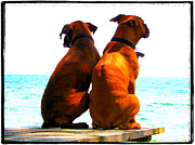 Boxer Digital Art Prints - Best Friends Dog Photograph Fine Art Print Print by Stephan Chagnon Laura  Carter