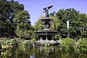 Bethesda Fountain Prints - Bethesda Fountain IV - Central Park Print by Madeline Ellis