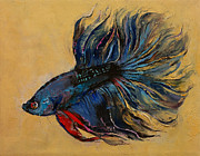 Michael Creese - Betta Fish