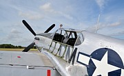 North American P51 Mustang Prints - Betty Jane Print by Matt Abrams