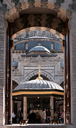 Entrance Door Framed Prints - Beyazit Cat Framed Print by Rick Piper Photography