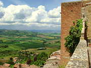 Tuscan Hills Framed Prints - Beyond the Rooftops 2 Framed Print by Ellen Henneke