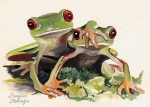 Red-eyed Tree Frog Painting Prints - BFF Froggies Print by Suzanne Schaefer