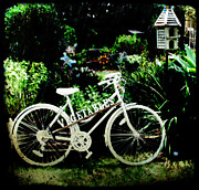 Therese Alcorn - Bicycle and Bird House