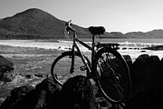 Bicycle Art Framed Prints - Bicycle At The Beech.  Framed Print by Aidan Moran
