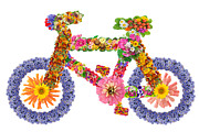 Aleksandr Volkov - Bicycle from flowers