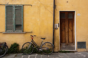 Amy Bynum - Bicycle in Pisa