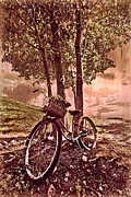 Autumn Scenes Framed Prints - Bicycle in the Park Framed Print by Debra and Dave Vanderlaan
